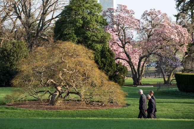 Barack Obama, Denis McDonaugh, John Podesta, April 8, 2014