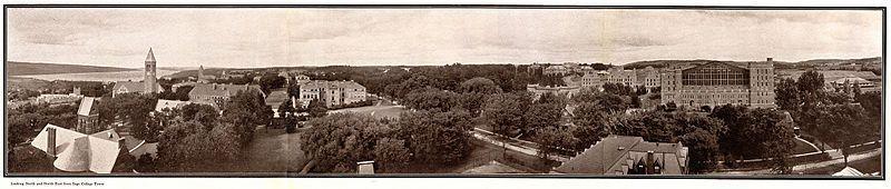 Cornell University in 1919