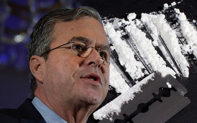 Jeb Bush Celebrity News photo
