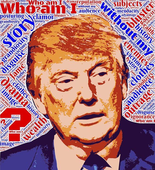Donald Trump (Tax Wall Street Party image)