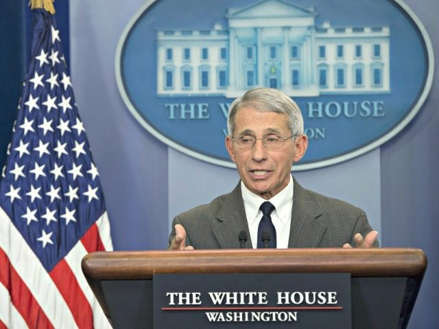 anthony fauci white house