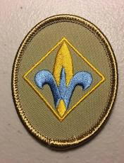 cub scout webelos badge