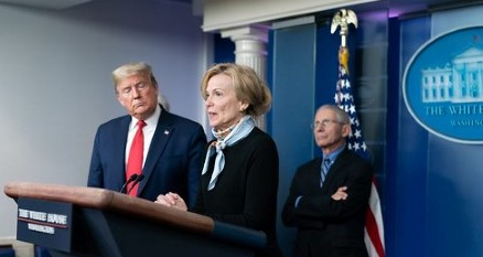 deborah birx djt white house photo cropped
