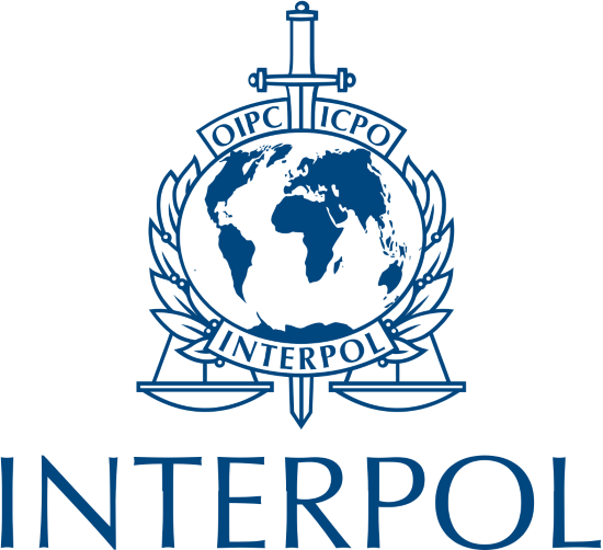 interpol logo Custom