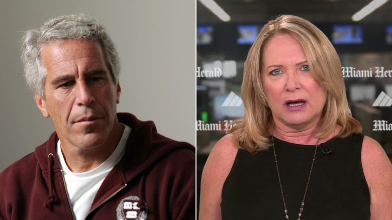 jeffrey epstein julie brown cnn screenshot