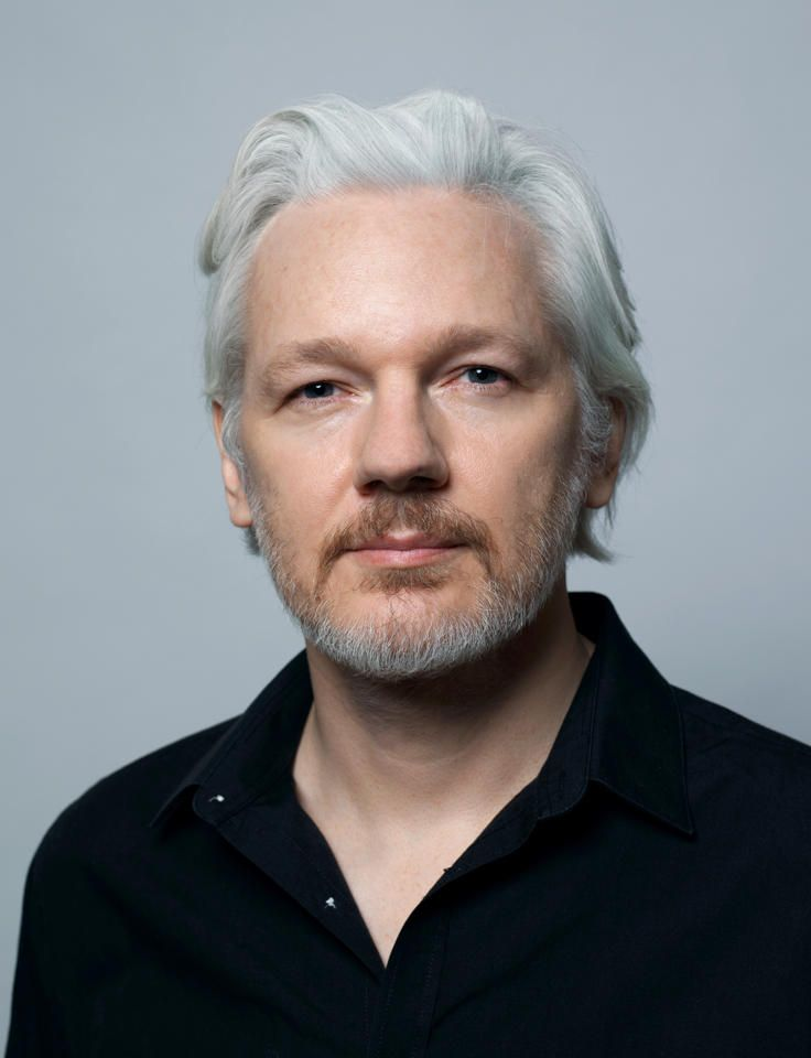 julian assange head book