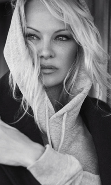 pamela anderson foundation portrait