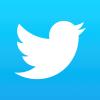 twitter bird Custom