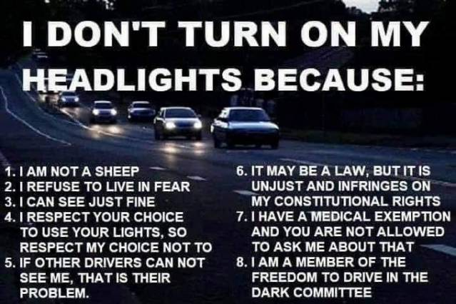 vaxxers headlights