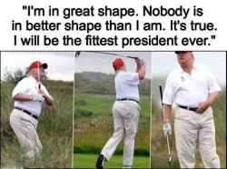 djt golf in shape custom