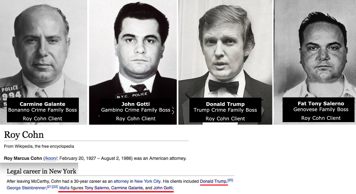 Image result for Lawyer Who Bested Roy Cohn Tapped for Big Gig in SDNY